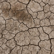 Dry ground texture — Stockfoto