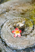 陶瓷青蛙和朵美丽的花 — 图库照片