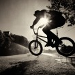 Boy jumping on bmx inside splashes — Stock Photo #6024831