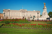 Buckingham Palace, London — 图库照片