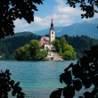 Lake bled in Slovenië — Stockfoto