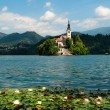 Lake Bled in Slovenia — Foto de stock #6178872