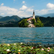 Lake Bled in Slovenia — Stock fotografie
