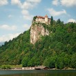 Bled castle, Slovenia. — Photo