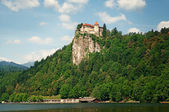 Bled castle, Slovenia. — Stock Photo