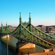 Liberty bridge Boedapest — Stockfoto