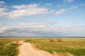 Polnej drodze do jeziora ilm. wczesną wiosną — Zdjęcie stockowe
