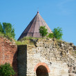 Royal Tower, the sixteenth century. Fortress Shlisselburg. Russi — Stock Photo