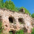 Ruined castle wall. Fortress Oreshek Shlisselburg. Russia — Stock Photo #6156194