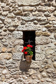 Window in an old wall with flower — Stock Photo