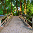 Stock Photo: Wooden Foot Bridge