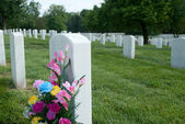 Flowers at Gravesite — Stock Photo