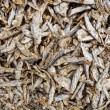 Dried Fish — Stock Photo #5940102