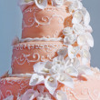 Wedding Cake — Stock Photo #6048216