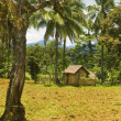 Stock Photo: Dumagat Hut
