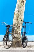 Chinese Bicycle — Stock Photo