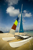 Hobie Cat — Stock Photo