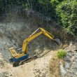 Forest Destruction — Stockfoto #6367480