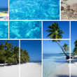 Collage of Republic Dominican - Stock Photo