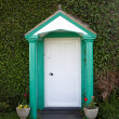 Stock Photo: Quaint door