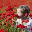 Girl on poppy field — Stock Photo #5882915