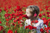 Girl on the poppy field — Stock Photo