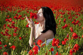 Girl on the poppy field — Stock Photo