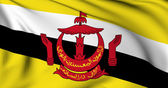 Flag of Brunei — Stock Photo