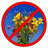 Do not pick flowers — Stock Photo