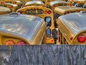 学校巴士停车场 — 图库照片