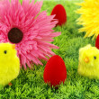 Easter eggs, flowers and chickens — Foto Stock