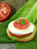 Tomate e queijo mussarela — Fotografia Stock