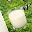 Glass of milk with a farm on background - Stock Photo