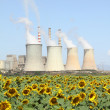 Sunflowers field and power plant — Stock Photo
