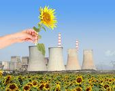 A concept of renewanle energy — Stock Photo