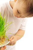 Little boy with green grass — Stock Photo
