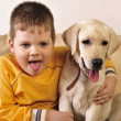 Little boy  and sweet puppy - Stock Photo