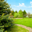 View of landscaped backyard of home - Stok fotoğraf