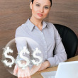 Portrait of a beautiful young businesswoman on the computer, rec — Stock Photo