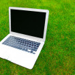Stock Photo: Laptop on grass