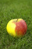 Apple in the grass. — Stock Photo