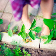 Artistic lifestyle photo of cute little girls legs outdoor - Stock Photo