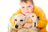 Handsome Young Boy Playing with His Dog Against White Background — Stock Photo