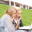 Portrait of two smiling women using laptop on a green meadow at — Stock Photo #6072351