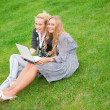 Portrait of two smiling women using laptop on a green meadow at — Stock Photo #6072366