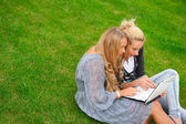 Portrait of two smiling women using laptop on a green meadow at — Stock Photo