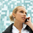 Portrait of pretty beautiful business woman on the phone with a — Stock Photo #6128069