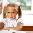 Portrait of a young girl in school at the desk. — Stock Photo #6330860