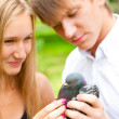 Portrait of young handsome couple holding a dove in park - Foto de Stock  