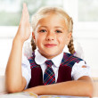 Portrait of a young girl in school at the desk.Horizontal Shot. — Stock Photo